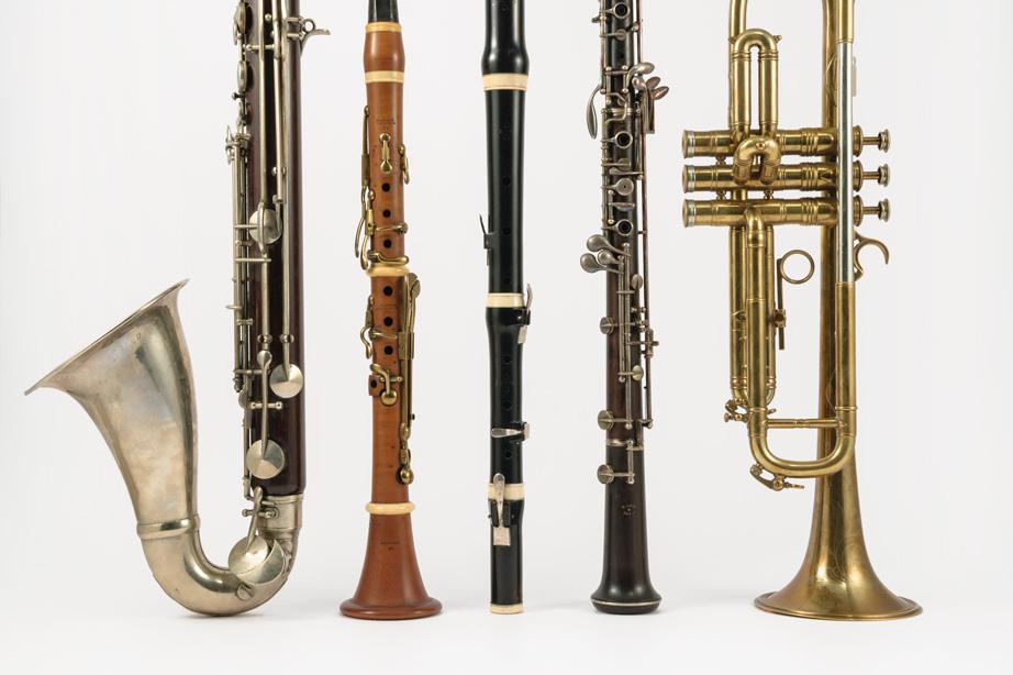 Flûtes, Hautbois, Clarinettes, Saxophones et Cuivres alignés sur un fond blanc.